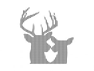 kburnetdesign_his&hers_stags_708
